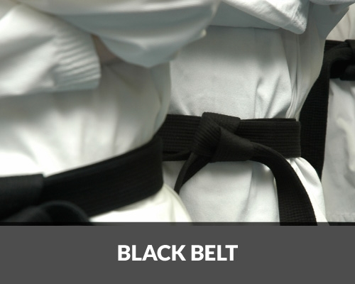 Curso de Upgrade para Black Belt Lean Six Sigma
